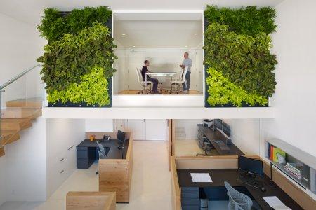 7 доводов в пользу «зеленого офиса»