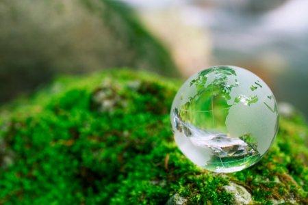 Фото 1 сохранить окружающую среду