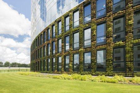Фото 1 новые стандарты строительства эко-офисов