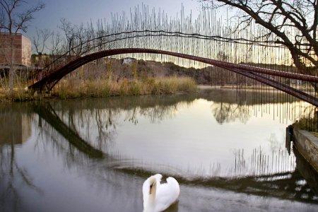 7 удивительных пешеходных мостов мира