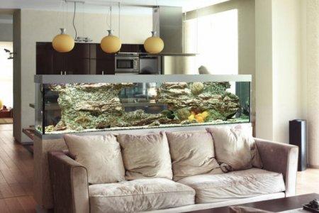 Фото 1 аквариум
