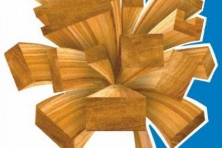 Современные пиломатериалы, наиболее популярные породы
