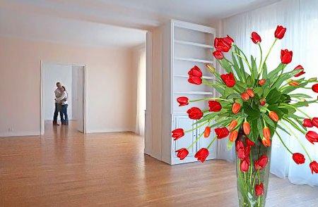 Новая квартира – как осуществить мечту или избавиться от нее