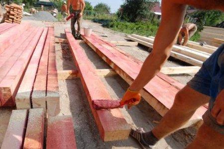 Как защитить древесину?