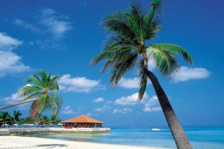Карибские острова ждут инвесторов из России и СНГ