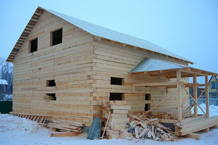 Фото 1 Смолистость древесины